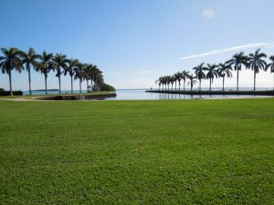 Deering Estate (13)