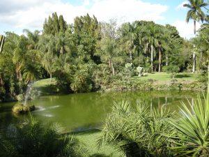 Pinecrest Gardens (4)